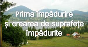 """Sprijin pentru prima impadurire si crearea de suprafete impadurite"""", submasura 8.1"""